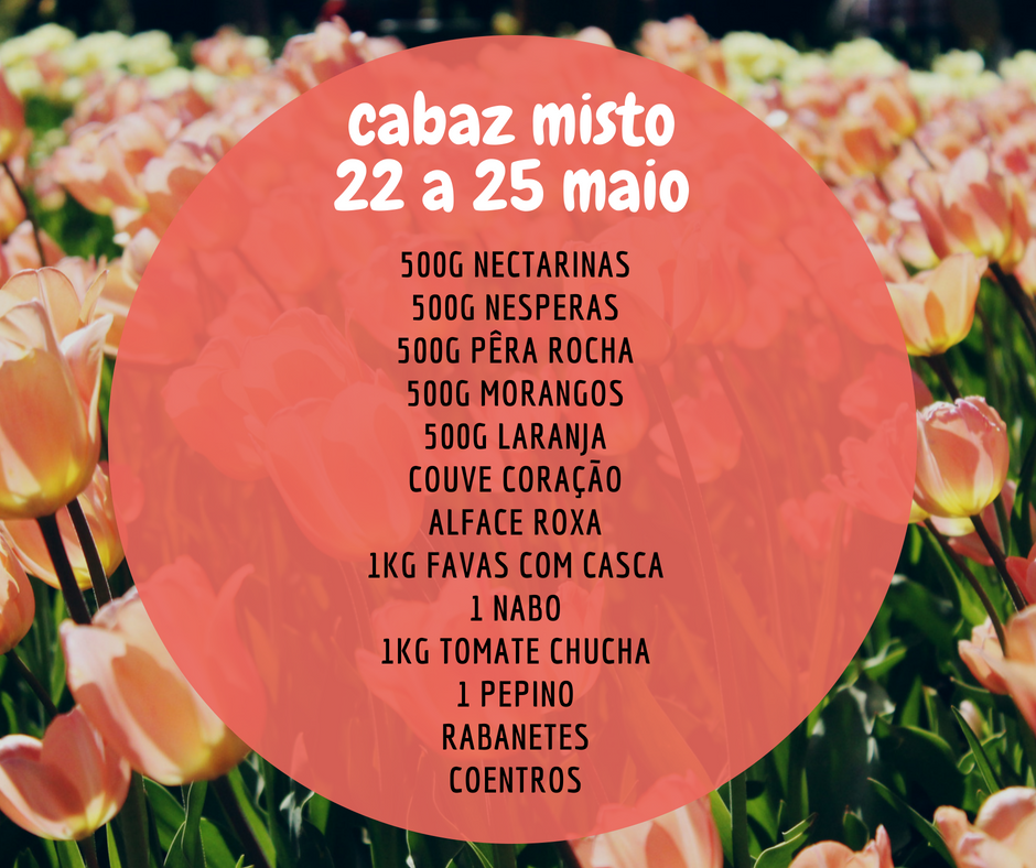 cabazmisto22a25maio.png