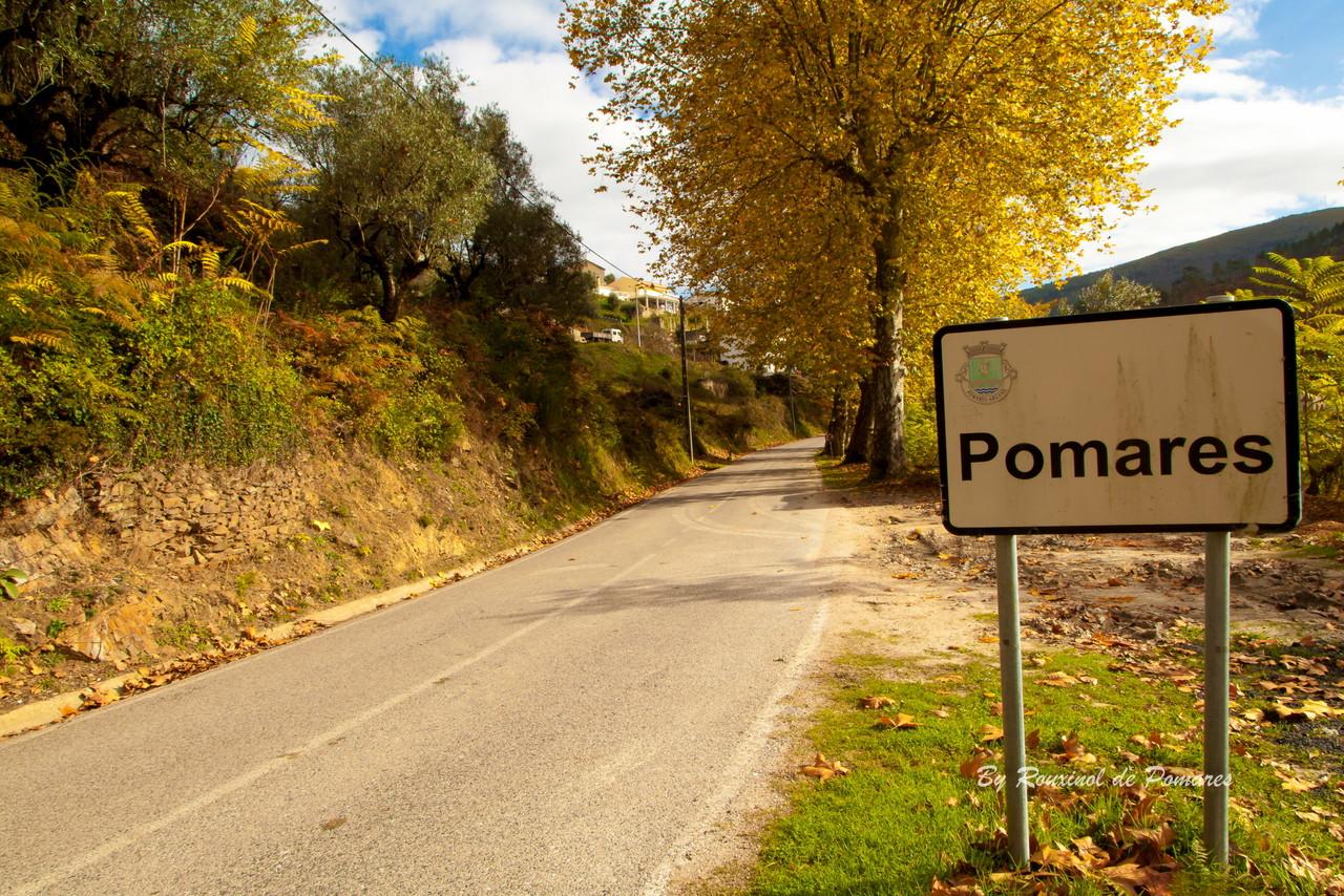 Outono em Pomares (1).JPG