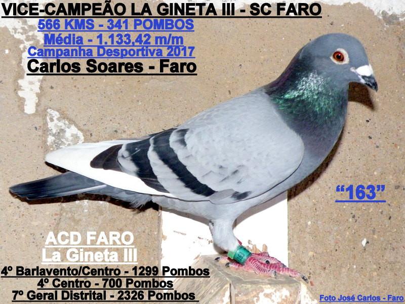Carlos Soares - Faro 002.JPG