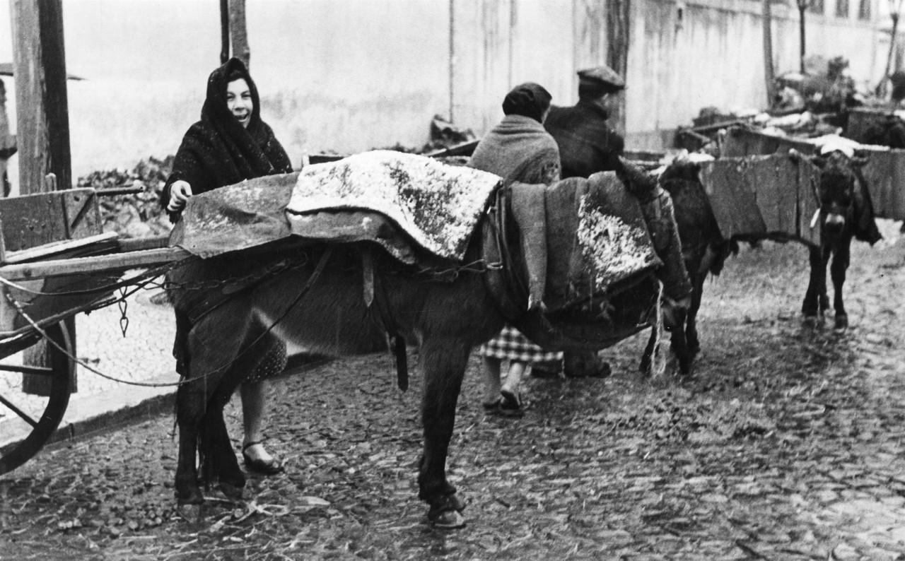 Efeitos do nevão junto ao mercado do 31 de Janeiro, Lisboa (F. Cunha, 1945)