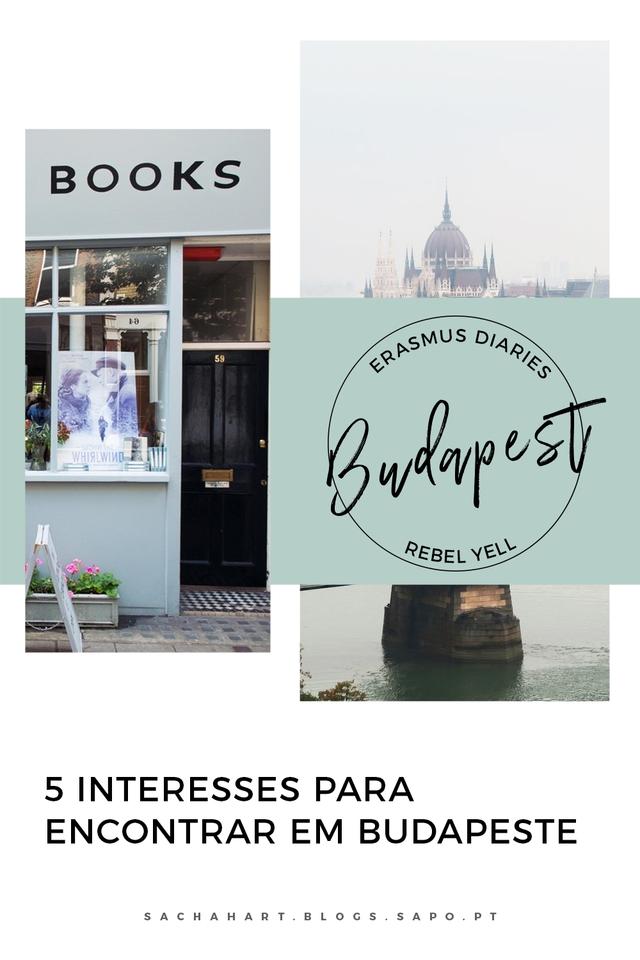 Erasmus Diaries // Budapest