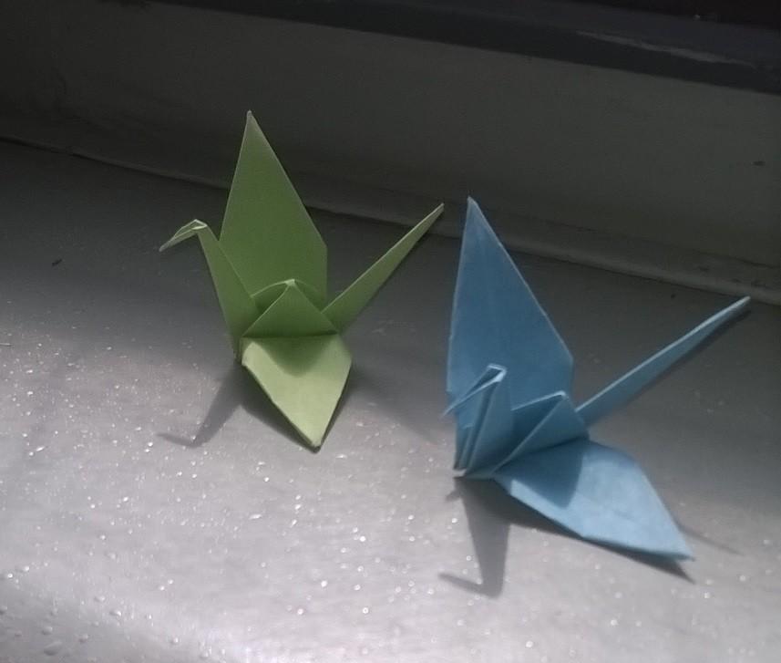 origami no catamarã.jpg