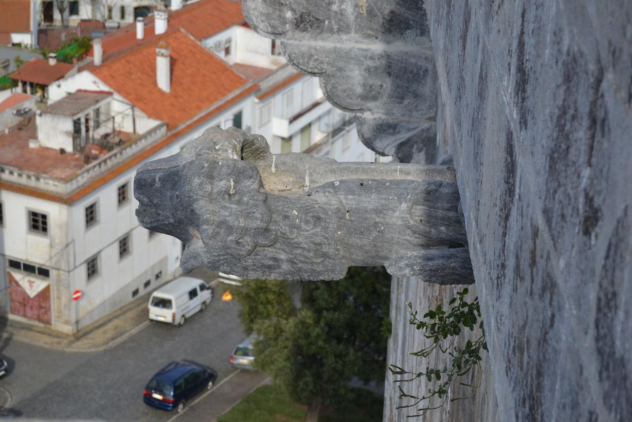Castelo de Beja (34).JPG