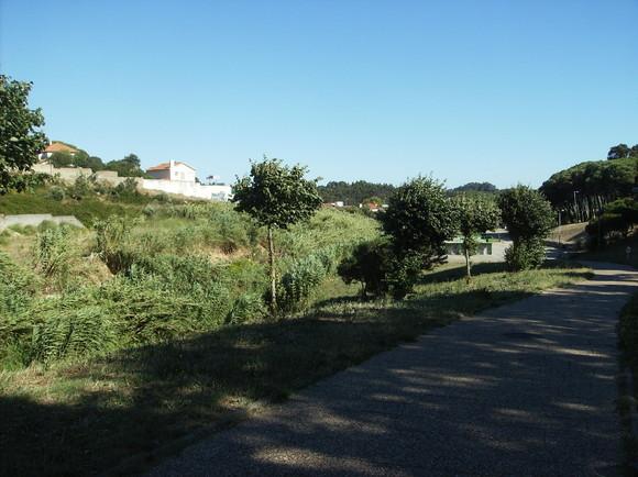 Rio de Mouro - parque urbano 031