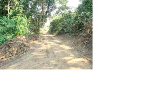 Estrada Ambuíla Quitexe