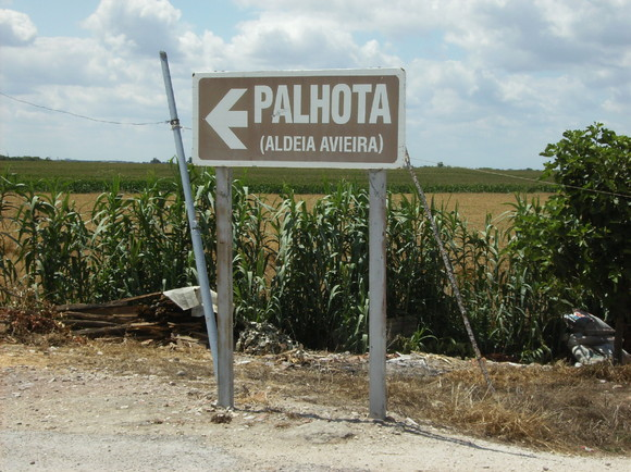 Palhota - Aldeia Avieira (2)
