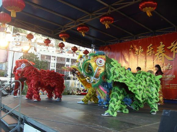 Ano Novo Chinês Lisboa (13)