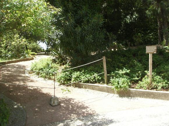 BL-jardims Estrela 012