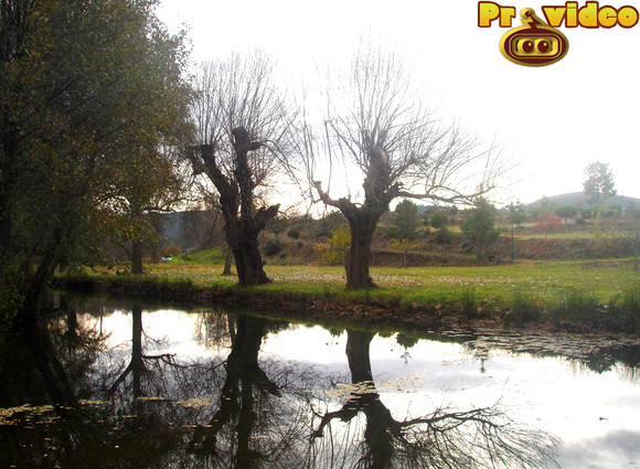https://c1.quickcachr.fotos.sapo.pt/i/Nd0116cfa/14093217_qoZYs.jpeg