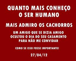 AMIGOS CACHORROS