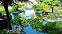Jardim de Angra