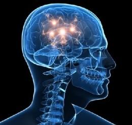 Ligações neuronais.jpg