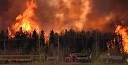 incendios2.jpg