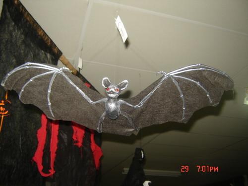 Morcego com 30cm