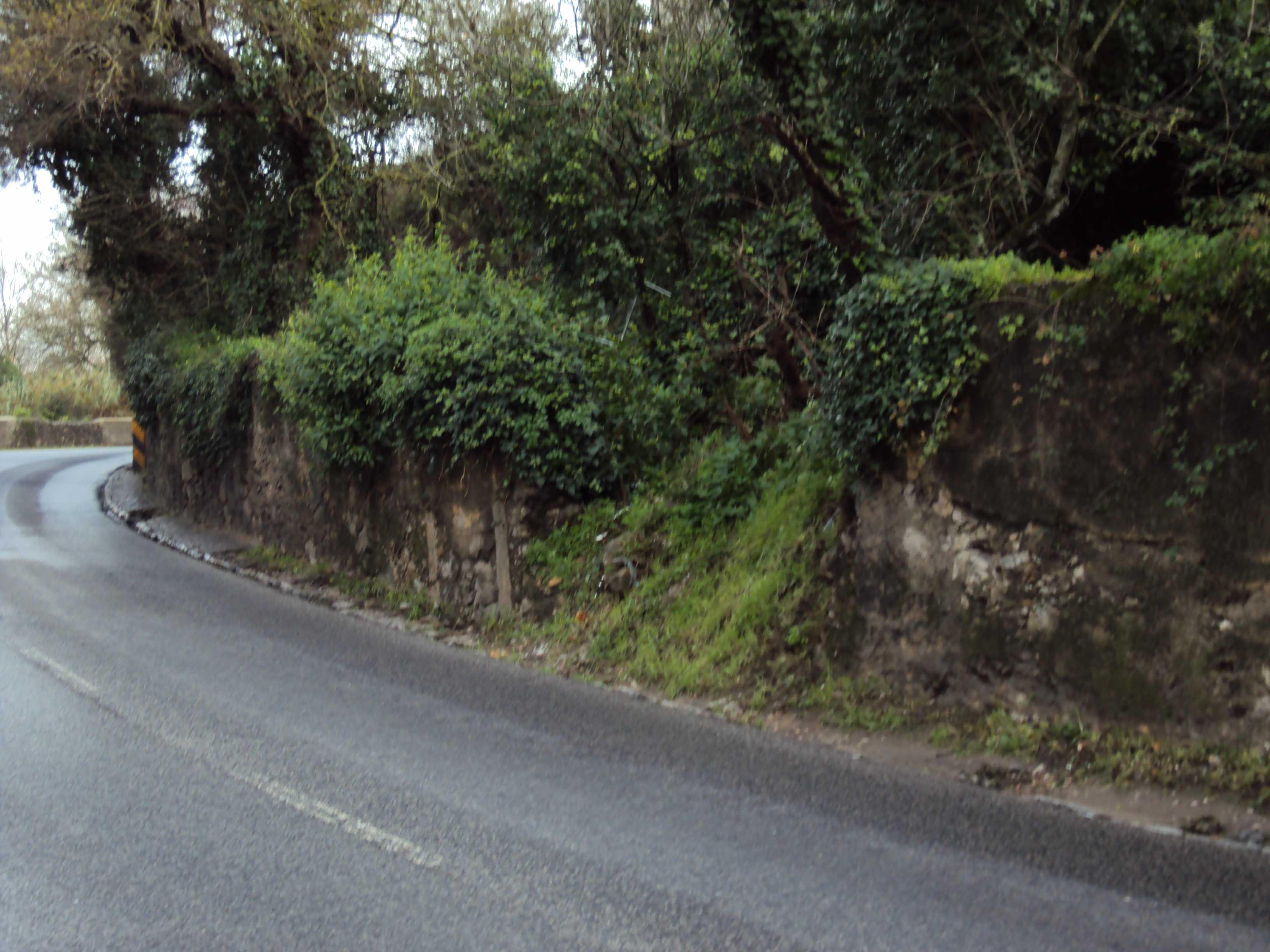 EN117 - Muro em Ruínas
