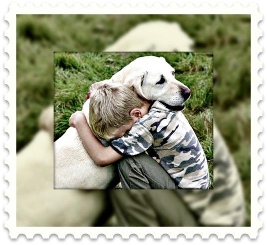 abraçando o meu cão