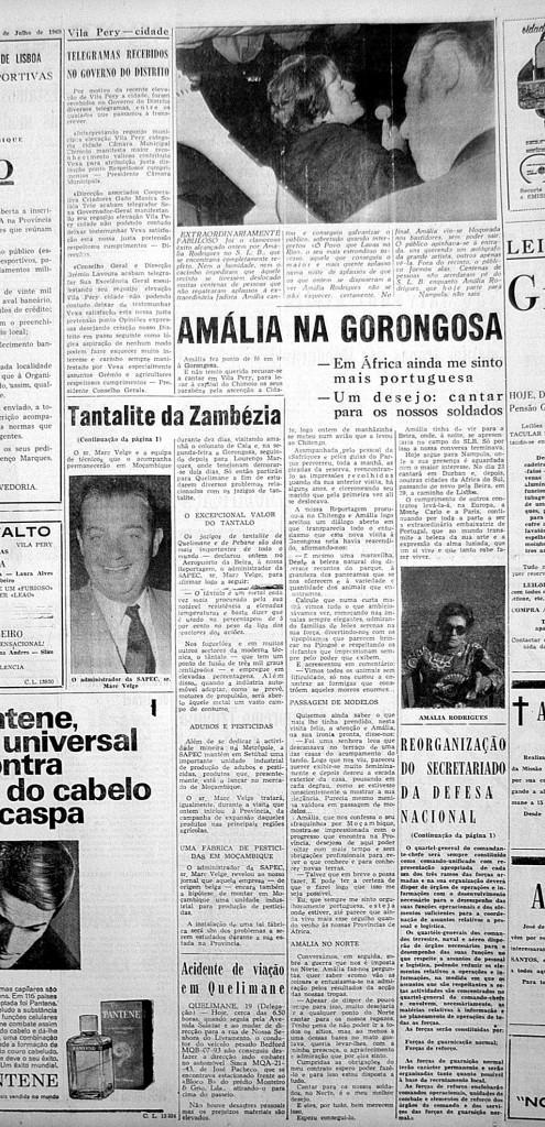 amalia-reportagem