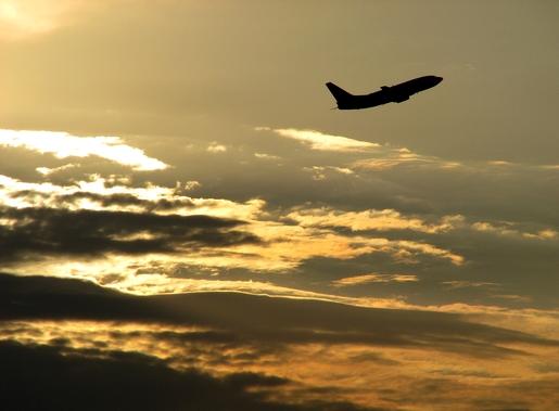 silhueta voadora