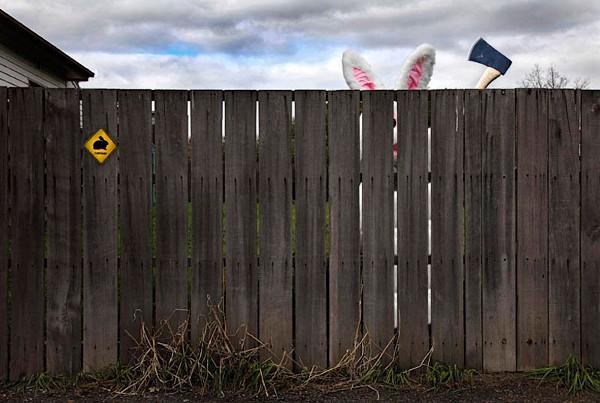 cuidado com o coelho