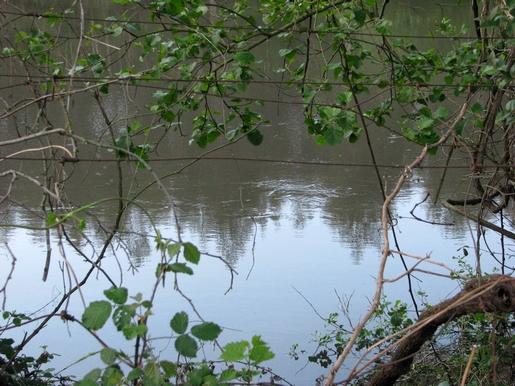detalhe de um rio