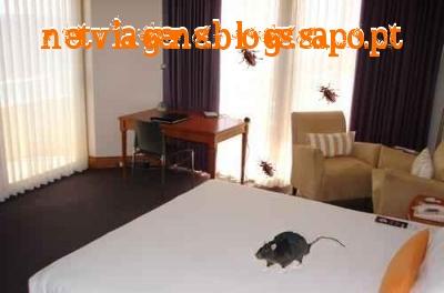Maus Hotéis, hotéis sujos