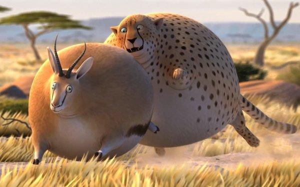 animais selvagens obesos