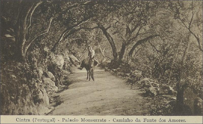Cintra (Portugal) - Palacio Monserrate - Aminho da Fonte dos Amores.