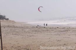 Praia da Vieira